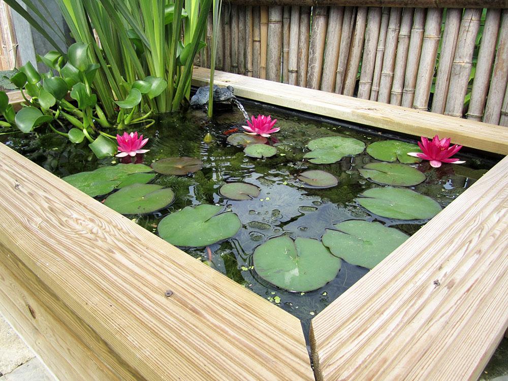 Galleria laghetti for Vasca pesci giardino